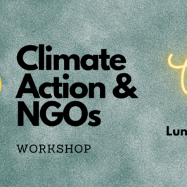 Climate Action & NGOs – Workshop