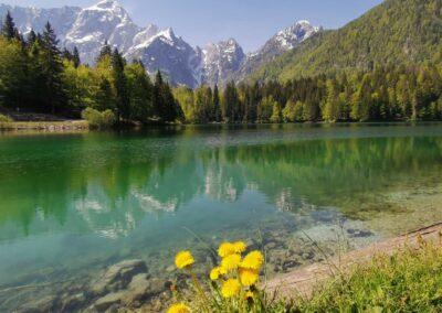 Il Friuli Venezia Giulia verso il nuovo Piano d'Azione Regionale per il GPP