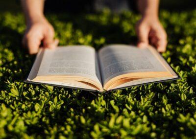 Premio Manlio Resta, online il bando per le tesi di laurea green